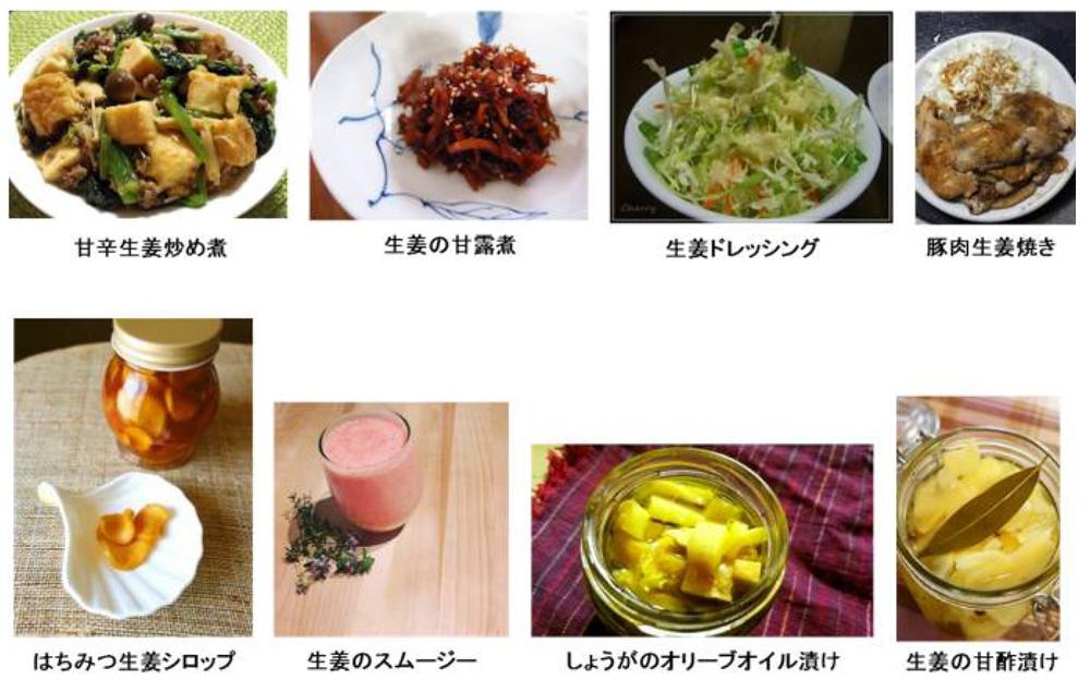 東海地域生物系先端技術研究会 読み物コーナー ~野菜の魅力~ ショウガの仲間